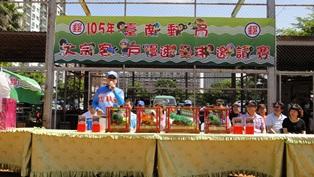 臺南郵局105年度郵政員工暨大宗客戶慢速壘球邀請賽