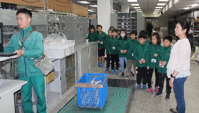 基隆郵局-東光國小-一日郵局體驗營