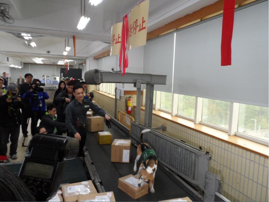 查緝程序-4.國際進口郵件走輸送帶準備照X光機