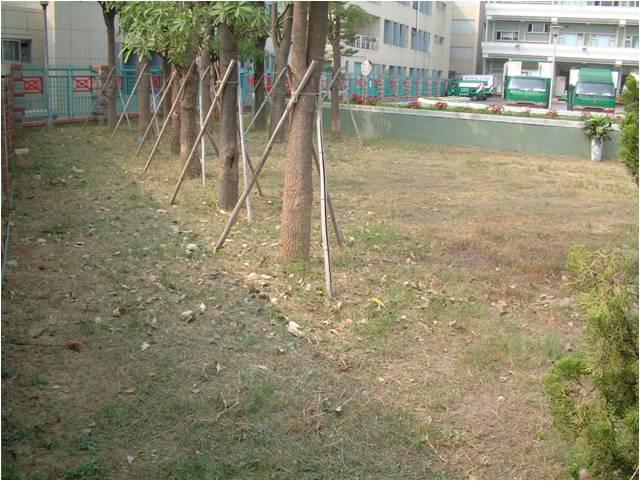 利用廢棄植草磚、人行磚及其他廢棄物,闢建「環保花園」。