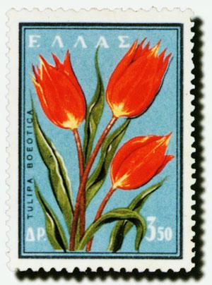 花卉郵票圖3-5