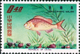 Special 34 Taiwan Fishes Stamps (1965)