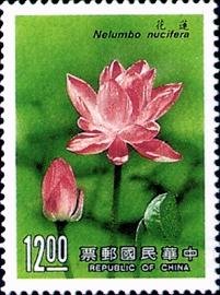 (特254.7)特254花卉郵票(77年版)