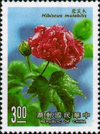 (特254.13)特254花卉郵票(77年版)