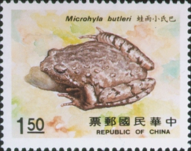 Special 258 Rare Animal - Amphibian - Postage Stamps (1988)