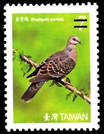 (常128.9)常128臺灣鳥類郵票(第3輯)
