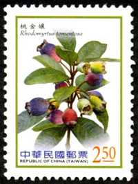 Def.136 Berries Postage Stamps (Continued)