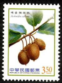 Def.136 Berries Postage Stamps