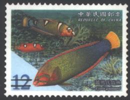 (特489.3)特489 臺灣珊瑚礁魚類郵票(95年版)
