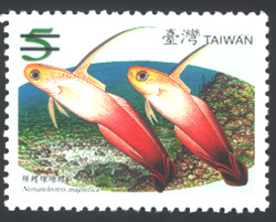 Sp.506 Taiwan Coral-Reef Fish Postage Stamps (Issue of 2007)