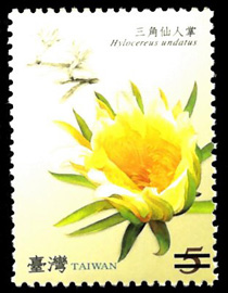 Sp. 518   Flower Postage Stamps - Cactus