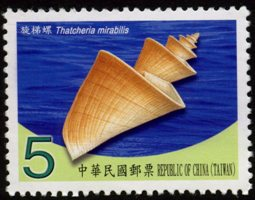 Sp.551 Seashells of Taiwan Postage Stamps (IV)