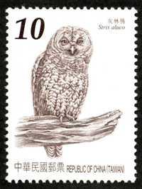 特561   臺灣貓頭鷹郵票