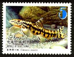 Sp.569 Fishes of Taiwan Postage Stamps (II)