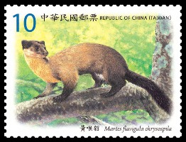 ( 特579.3 )特579 臺灣保育類哺乳動物郵票