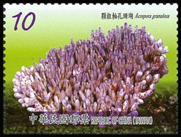 (Sp.599.3)Sp.599 Corals of Taiwan Postage Stamps