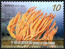 (Sp.628.3)Sp.628 Corals of Taiwan Postage Stamps (Issue of 2015)
