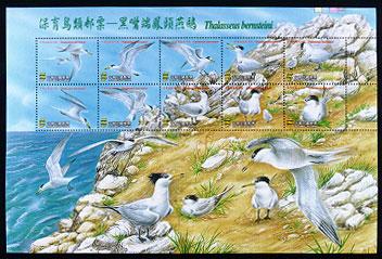 特435保育鳥類郵票—黑嘴端鳳頭燕鷗